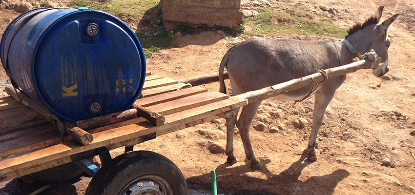 A donkey cart, carrying a large drum, is used for water transport at a peri-urban water kiosk.